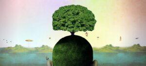 strom hlava hojdacka 182861 300x137 L'intervento dello Psicologo nella Psicologia della Salute