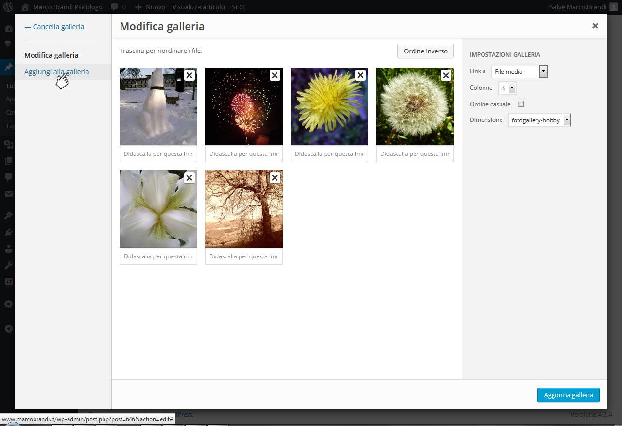 02 tutorial inserimento foto nella galleria