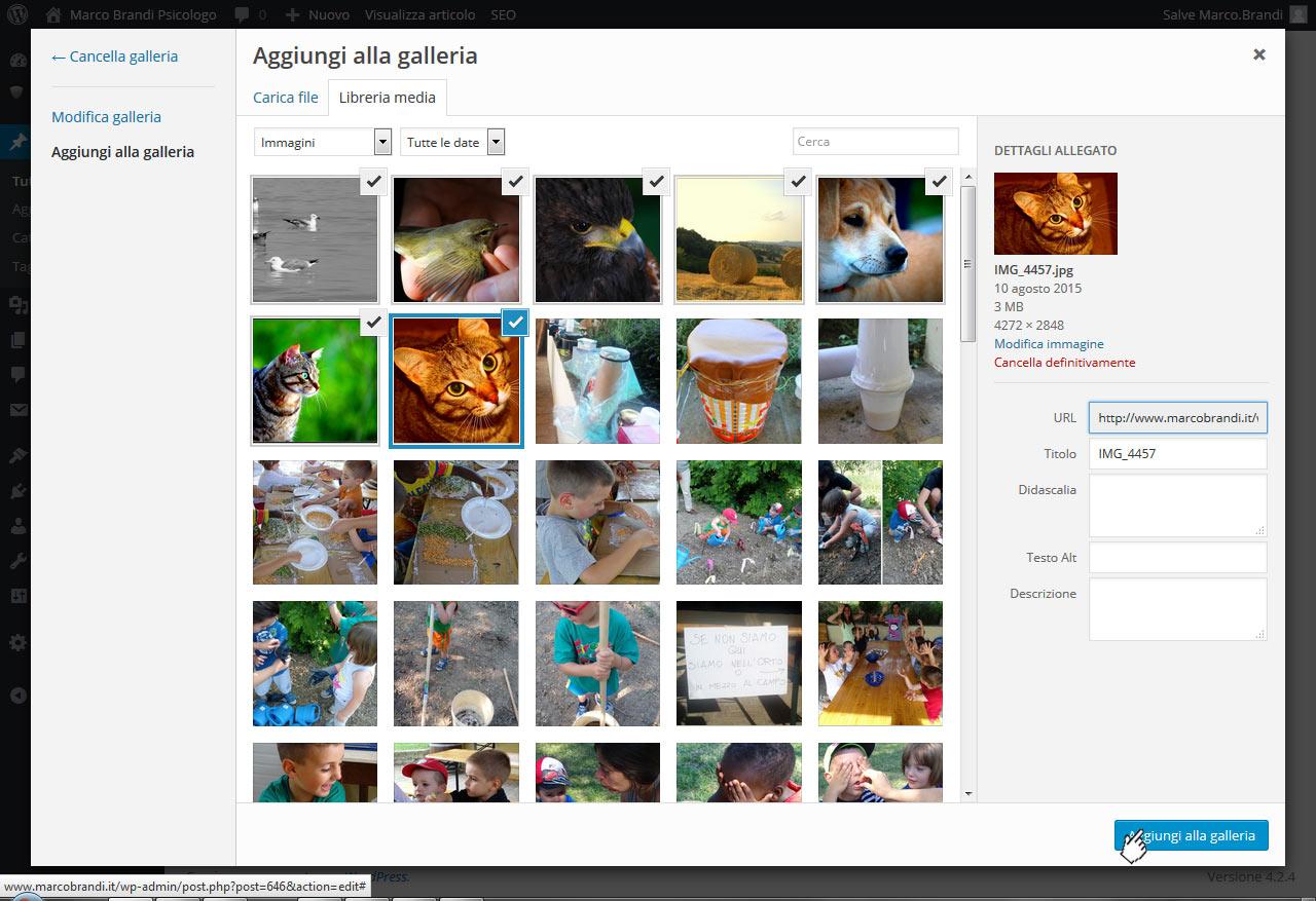 03 tutorial inserimento foto nella galleria