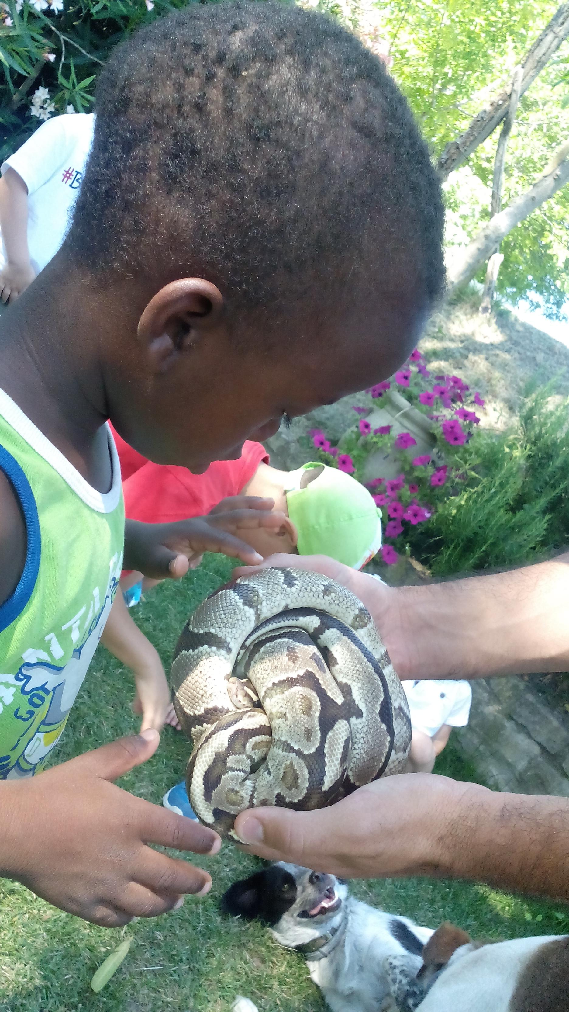 wpid img 20150701 102023 Bambini e Animali