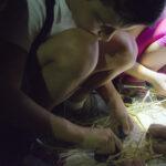 DSC0227 150x150 Famiglia e Natura Belmonte Piceno. Le immagini