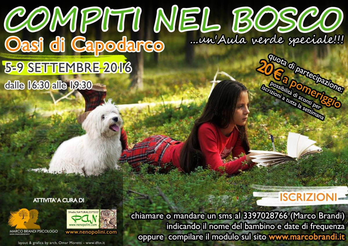 2016 compiti 5 9 settembre   COMPITI NEL BOSCO   Unaula verde speciale!