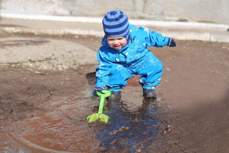Limportanza dei microbi