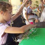 20170626 114732 150x150 I bambini e la natura   Centro Estivo 2017