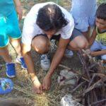 20170630 083247 150x150 I bambini e la natura   Centro Estivo 2017