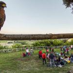 Famiglie e Natura 2017 154 150x150 La natura al buio   Le emozioni di Famiglia e Natura di Notte