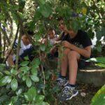 IMG 4047 150x150 I bambini e la natura   Centro Estivo 2017