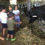 IMG 4258 150x150 I bambini e la natura   Centro Estivo 2017