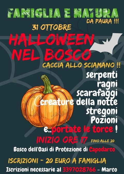 HALLOWEEN NEL BOSCO 2017 Halloween Nel Bosco Capodarco 31 Ottobre