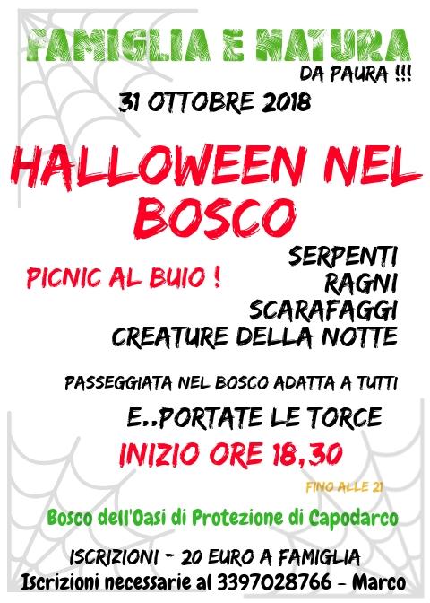 HALLOWEEN 2018 Halloween nel Bosco 31 ottobre Capodarco