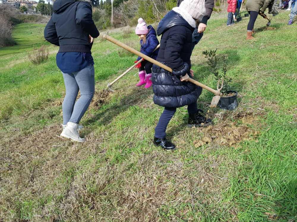 img 20190105 wa0018 20222710 Il bosco si allarga grazie ai bambini