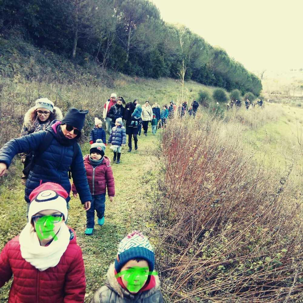 img 20190106 191930 4441615216009 Il bosco si allarga grazie ai bambini