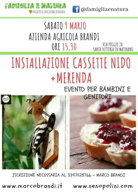 cassette nido 1976448155. Installazione cassette nido+Merenda