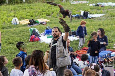 Famiglie e Natura 2017 (118) edited