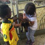IMG 4241 150x150 I bambini e la natura   Centro Estivo 2017